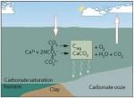 carbonatebuffer